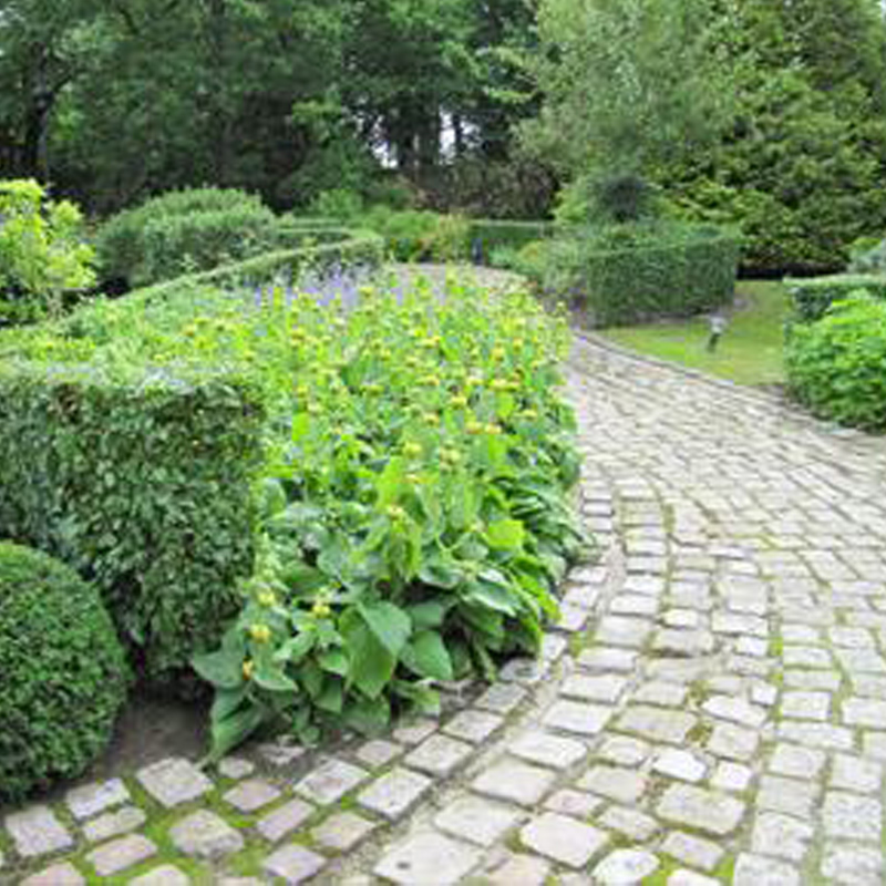 Am nagement de jardins deauville brize espaces verts for Entretien jardin 31
